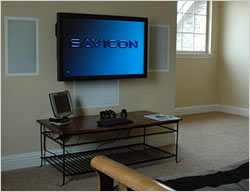 savicon-screen.jpg